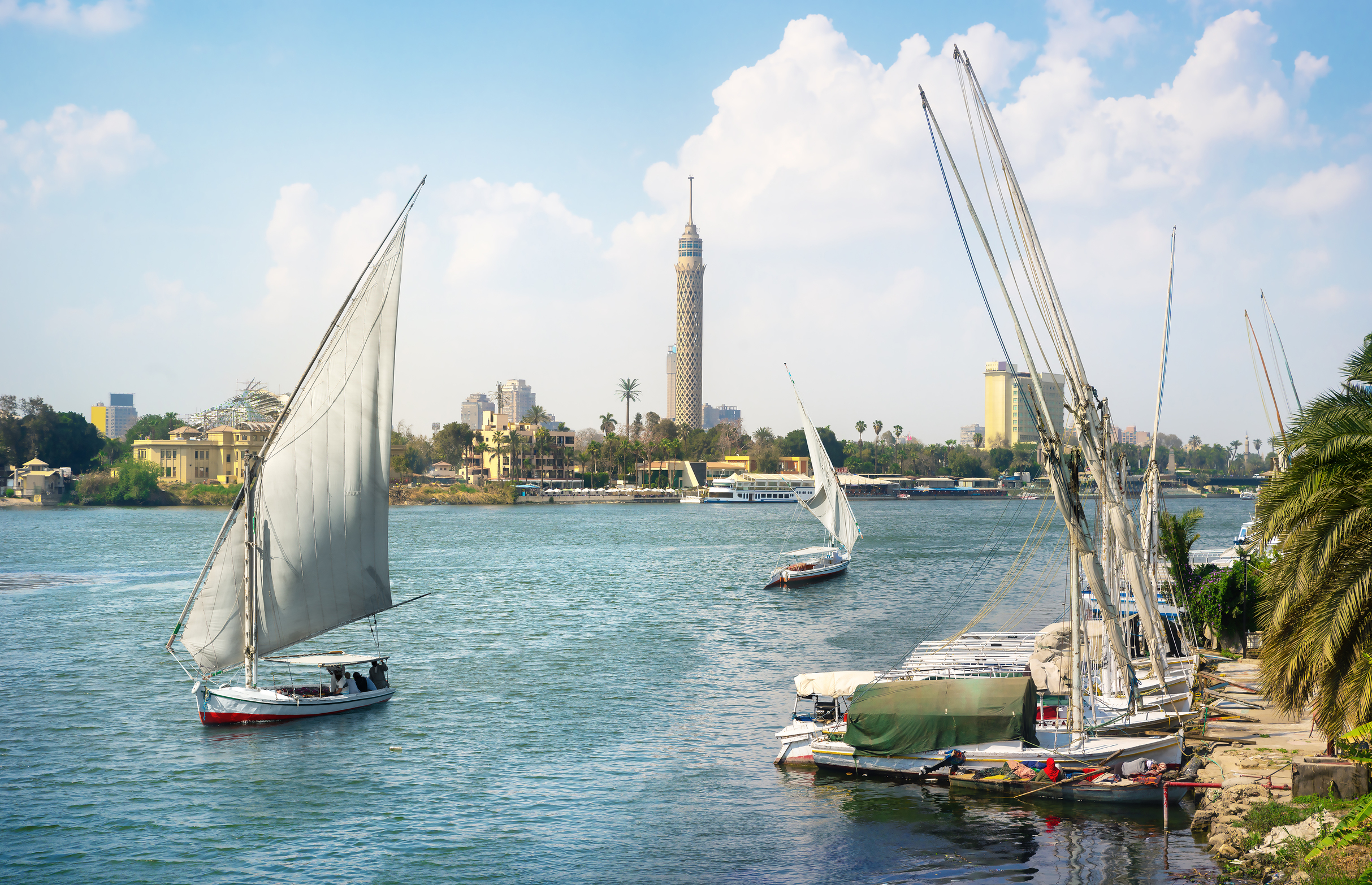 Sailboats in Cairo